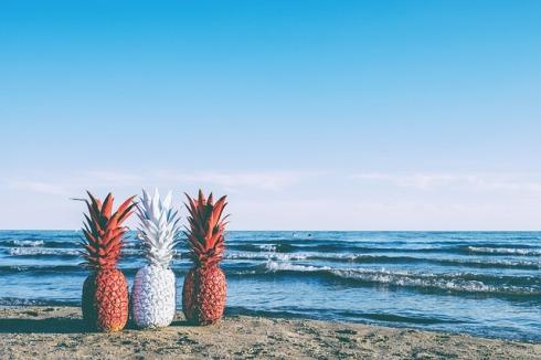 pineapple-1621345_640